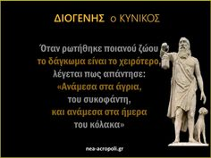 Great Words, Wise Words, Work Success, Greek Quotes, Inspire Me, Philosophy, Literature, Jokes, Mindfulness