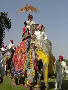...Durante el desfile, también participan como escoltas otros animales como los camellos.  También hay bailarinas y músicos que amenizan el desfile con danzas tradicionales hindúes...