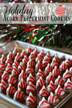 Easy Holiday Acorn Cookie