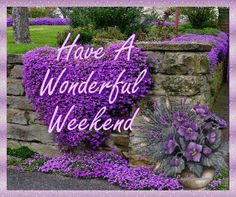Have a wonderful weekend weekend friday sunday saturday happy weekend weekend greeting weekend quote weekend gif weekend blessings good morning weekend animated weekend Weekend Gif, Three Day Weekend, Weekend Humor, Happy Weekend, Nice Weekend, Good Morning Gif, Good Afternoon, Good Morning Wishes, Morning Images