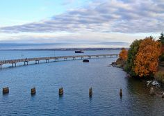 This is the project page of the Bellingham Bay TMDL Summary, Washington State Department of Ecology Bellingham Washington, Washington State, Wa State, Ecology, Fun Things, Beautiful Things, Vacations, Trail, Earth