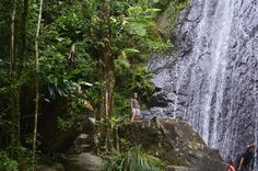 Hiking El Yunque National Rainforest in Puerto Rico -