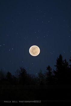 super moon  paula bell photography©2012