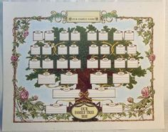 166 best family tree templates images family genealogy family