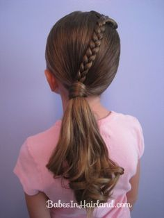 Ponytails and a Braid (11)