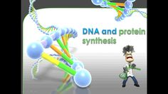 Animated PowerPoint that may be used as a comprehensive teaching tool for DNA and protein synthesis (Grade Life Science, Science And Nature, Science Resources, Teaching Tools, Dna, Protein, Natural, Teacher Tools, Teaching Aids