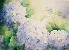 'Blue Hydrangers' Watercolour 45x60 2005