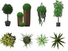 Resultados de la Búsqueda de imágenes de Google de http://www.doschdesign.com/images2/Red-DVI-IndoorPlants.jpg