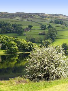 Early summer, Peak District National Park, Derbyshire, England