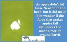 History Facts : Isaac Newton apple | did you know