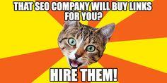Small Business Marketing Advice: Hiring a Legitimate SEO Agency Seo Agency, Web Technology, Small Business Marketing, Seo Company, Web Development, Sarcasm, Meme, Memes, Satire