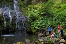 The Kohala Zip & Dip includes 9 zip lines, 5 suspension bridges, 2 rappels and of course swimming! Lunch is provided as well as transportation from select locations! #kohala #zipline #bigisland #hawaiidiscount