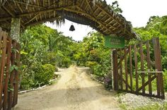 Welcome to Finca Punta Ayampe Hotel tours in Montanita, Ecuador. A paradise found in the wilderness of nature, Finca Punta Ayampe is a dream come true for any traveller lucky enough to experience the surfing, whale watching and different tours that cover land, sea and culture of the zone.