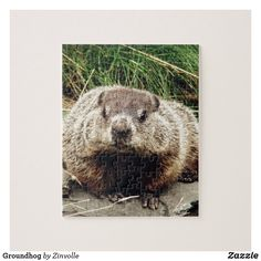 Groundhog Jigsaw Puzzle Make Your Own Puzzle, Custom Gift Boxes, Newfoundland, Chipboard, Beautiful Gift Boxes, High Quality Images, Your Design, Jigsaw Puzzles, Celebrations