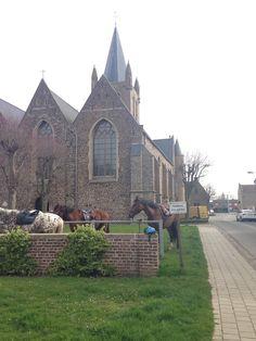 Markt - Nieuwkerke in Heuvelland, West-Vlaanderen