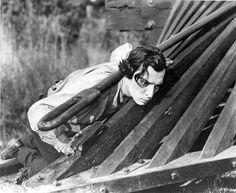 Buster Keaton画像bot (@busterpic_bot) | Twitter