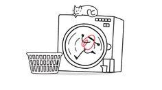 #character #animade #2D #airbnb #washing #machine #cat