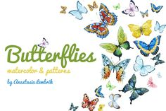Watercolor butterflies +PNG! - Illustrations