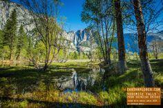 Reflection of Yosemite Falls from Swinging Bridge