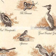 Bewick Birds   Lewis & Wood