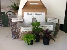 DIY terrarium kit  #envirocakes Diy Terrarium Kit, Potting Soil, Preserves, Gift Wrapping, Gifts, Gift Wrapping Paper, Preserve, Presents, Gifs