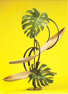 Design by Barbara Crank