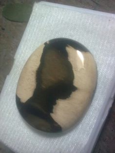 wood fossil, picture agate indonesia, rare