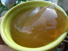 L'agar-agar ou kanten est en effet un allié intéressant pour la santé. Inodore, incolore et sans saveur, sa valeur calorique est presque nulle, mais elle apporte une belle moisson de calcium, de phospore, de fibres et de minéraux. C'est une substance...