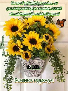 Motto, Good Morning, Plants, Good Day, Buen Dia, Bonjour, Plant, Planting, Planets
