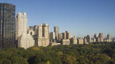 Der Central Park passt jetzt in unser Badezimmer!