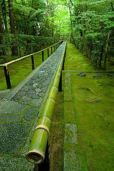 Entrance to Koto-in garden, moss, bamboo, Kyoto, Japan