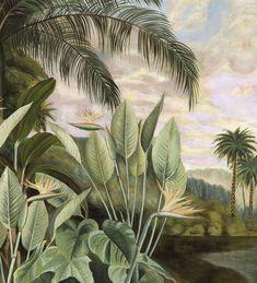 Interior Wallpaper, Wallpaper Decor, Vintage Style Wallpaper, Safari, Hand Painted Wallpaper, Wall Murals, Wall Art, Forest Illustration, Tropical Forest
