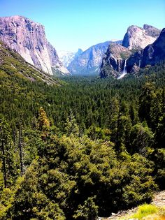 Yosemite Valley. I can't wait for Tuesday for my week in Yosemite!!