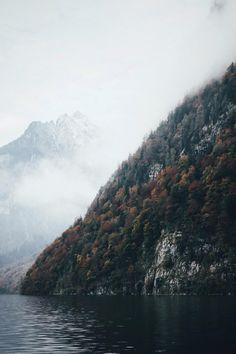 artsy, nature, photography, trees