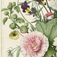 Boeket bloemen, anoniem, 1680 - Blumen-Verzameld werk van Elisabeth Schneider - Alle Rijksstudio's - Rijksstudio - Rijksmuseum