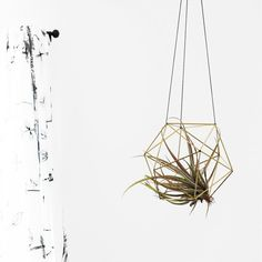 Orb Himmeli | Modern Hanging Mobile | Geometric Art Sphere | Air Plant Hanger | Minimalist Home Decor