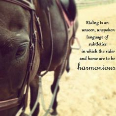 """Riding is an unseen, unspoken language of subtleties in which the rider and horse are to be harmonious."""
