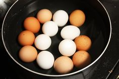 Difference Between White Eggs & Brown Eggs