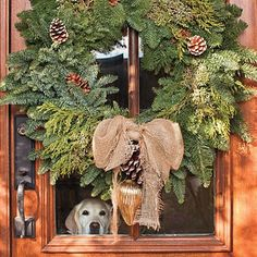 Christmas wreath (I just love the doggie in the window)