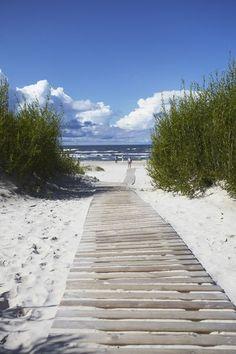 Camino de la playa-gris oscuro y gris de la ruta de la madera, azul marino del océano, medianas y cielo azules, blanco nítido de las nubes, arena de color avena, la vegetación de color amarillo-verde.