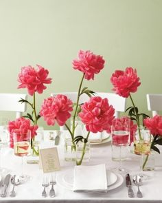 The centerpieces will be bulb vases holding two coral peonies surrounded by white bud vases holding single, coral peonies and votives.