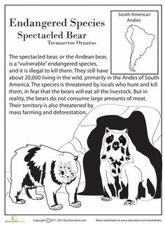 Worksheets: Endangered Species: Spectacled Bear and science worksheets