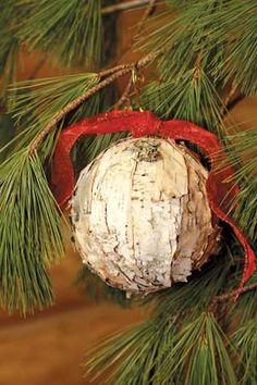 Collect birch bark pieces and tear and attach them, mosaic-style, to a Styrofoam ball with a glue gun. Cabin Christmas, Primitive Christmas, Christmas Balls, Rustic Christmas, Christmas Time, Birch Bark Decor, Birch Bark Baskets, Birch Bark Crafts, Tree Bark Crafts