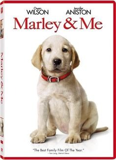 """When a dog wriggles his adorable rear end into a human's life, the human will never be the same. And both Marley, the dog, and Marley & Me, the movie, manage to endear themselves deeply despite a few wee flaws. Readers of the John Grogan bestseller already know the raffish charm of the incorrigible yellow lab puppy, Marley, adopted by Grogan and his wife because she's """"never seen anything more adorable in my life."""