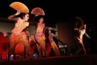 Korean Play The Tiger with White Eyebrows enthralls audience at Gurgaon..... For more visit: http://www.bollyvision.in/