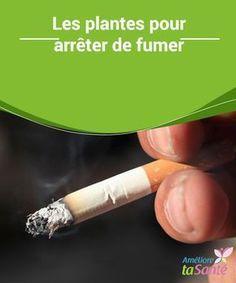Les #plantes pour arrêter de fumer Pour arrêter de #fumer, vous devriez avoir recours aux plantes. Il s'agit d'une #méthode douce et #naturelle qui pourrait bien vous suprendre !