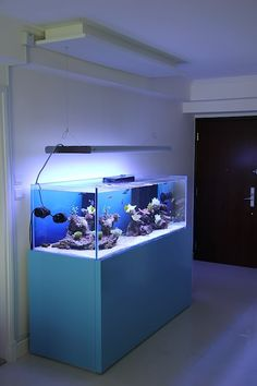 Modern Reef Aquariums - Page 13 - Reef Central Online Community