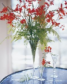 Crocosmia Arrangement - Let long stems arch out of a trumpet vase for an ethereal arrangement. Flower stems naturally follow the shape of this vase: They reach up and out, and the result is delicate and light. Choose flowers with graceful stems, such as this crocosmia, for the most pleasing look. Shorter cuttings of maidenhair fern float beneath the blooms. Echo the idea with smaller vessels -- parfait glasses work perfectly -- holding just a few stems.