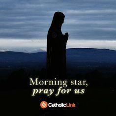 ~Morning Star, pray for us!