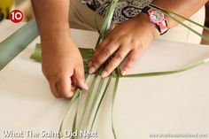 Flax weaving by hand to make a harakeke flower. This design is for an arum lily aka a calla lily. Flax Weaving, Basket Weaving, Flower Arrangement Designs, Flower Arrangements, Flax Flowers, Coconut Leaves, Weaving Process, Weaving Patterns, Leaf Art